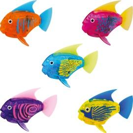 Rybičky do akvária