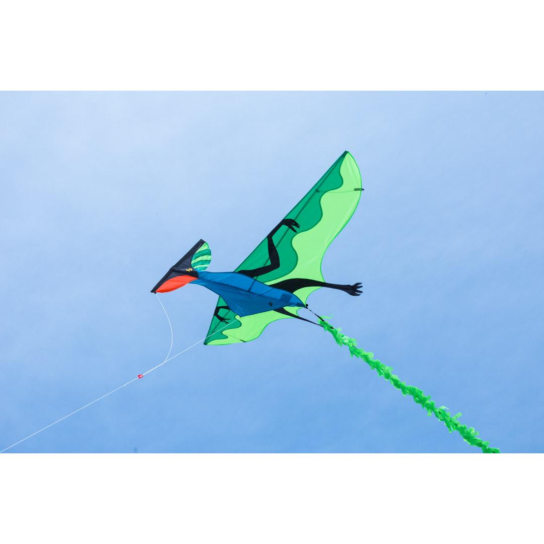 Obří létající dinosaur 3D drak 180x105 cm